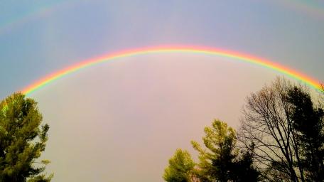 ragnars-rainbow